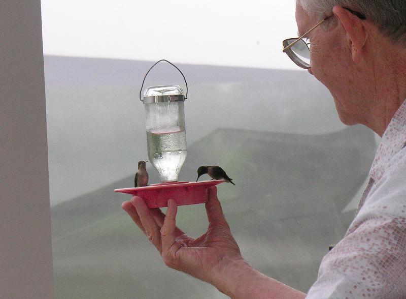 Feeding hummers at Robin & Wayne\'s house in OK.